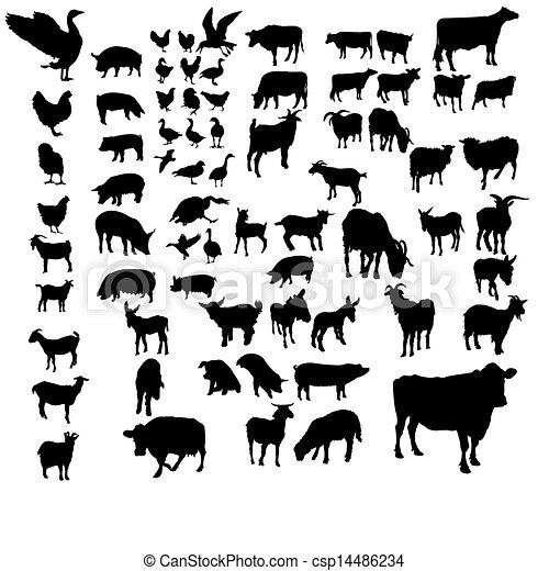 Ein Set von Haustieren - csp14486234