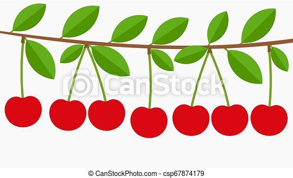 Kirschbaumzweig voller Früchte. - csp67874179