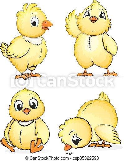 Kleine flauschige Hühner - csp35322593