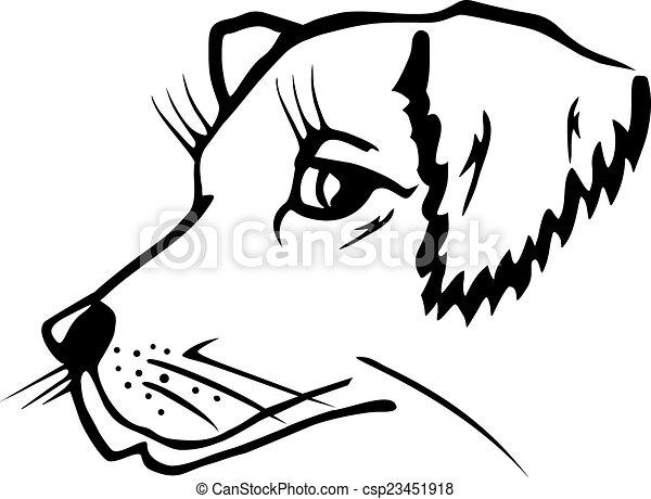 kopf, hund - csp23451918