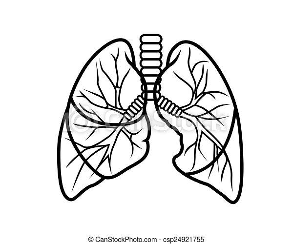 Lunge. - csp24921755