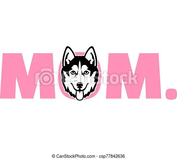malamute, rosa, alaskisch, mutti - csp77842636