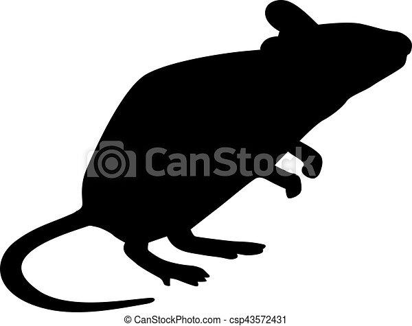 maus, silhouette, stehende  - csp43572431