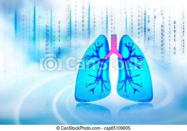 Menschliche Lungen. - csp65109605