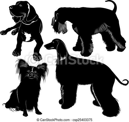 miniatur, schnauz, windhund, dogge - csp25403375