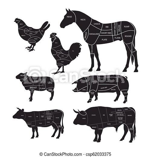 Monochromdiagrammführer zum Schneiden von Fleisch. Tiere mit Schnittlinien. Rindfleisch, Pferdefleisch, Lamm, Schwein und Huhn. Vector Illustration. - csp62033375