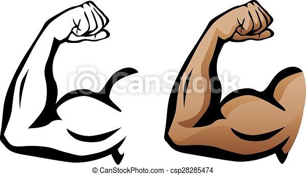 Muskelarm Flexing Bizeps. - csp28285474