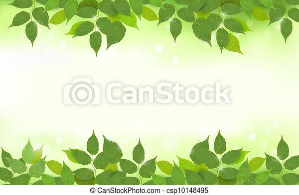 Natürlicher Hintergrund mit grünen Blättern - csp10148495