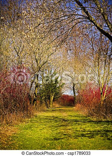 Natur und Farben - csp1789033