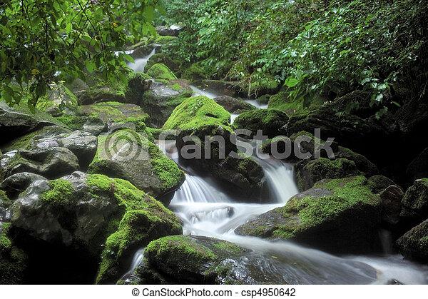 Naturblick - csp4950642