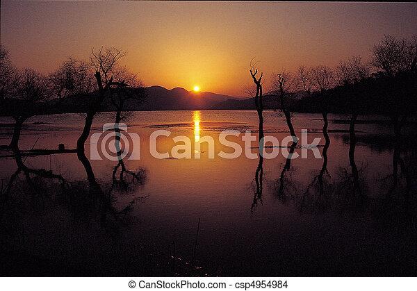 Naturblick - csp4954984