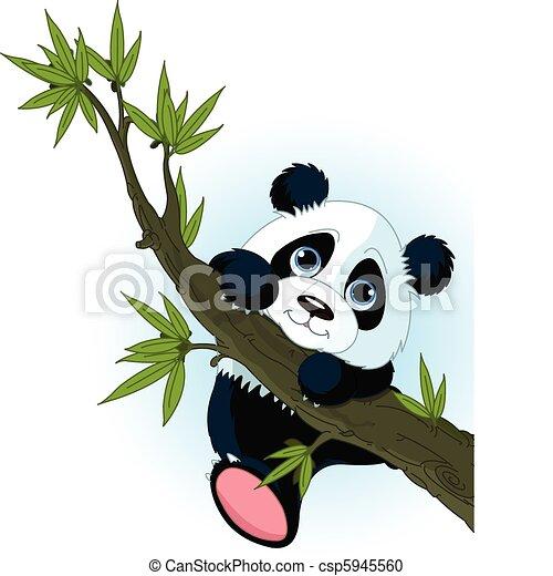 panda, kletternder baum, riesig - csp5945560
