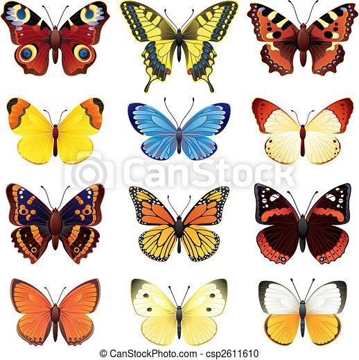 Schmetterlingsset - csp2611610
