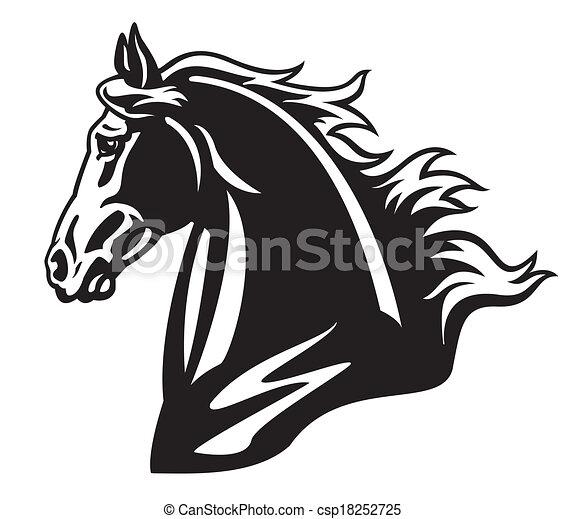 Pferdekopf schwarzweiß. - csp18252725