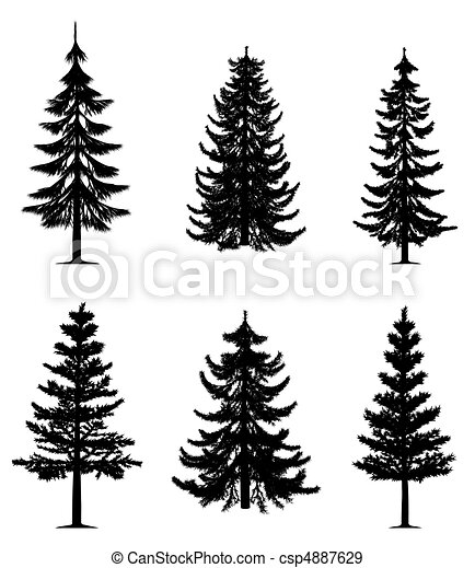 Pine-Bäume-Sammlung - csp4887629