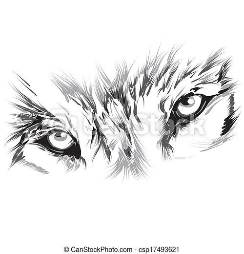 Portrait eines Wolfs. - csp17493621