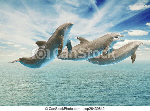 Springende Delfine. - csp26439842