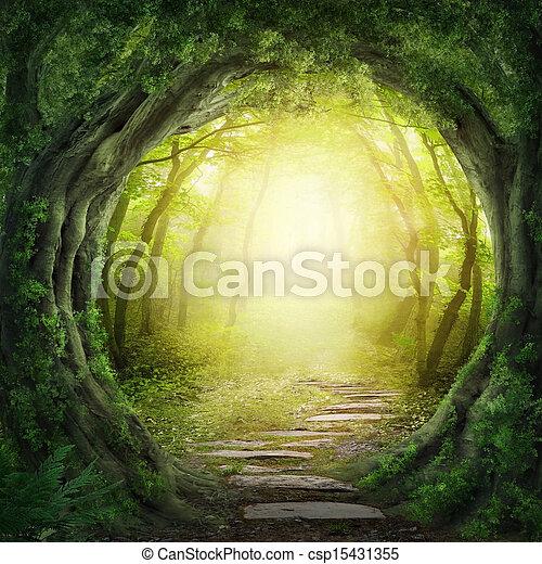 Straße im dunklen Wald - csp15431355