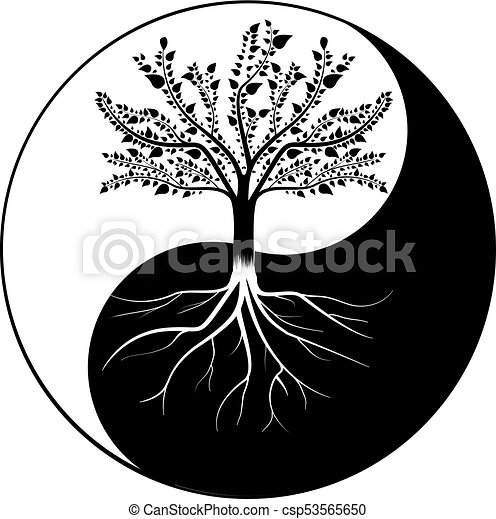 Tree Yang. - csp53565650