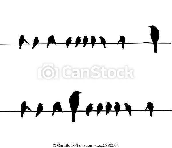 Vector Silhouettes der Vögel auf Draht - csp5920504