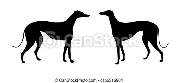 Vektor Illustration Greyhound auf weißem Hintergrund - csp6316904