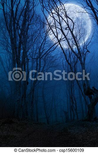 vollmond, finsterer wald, nacht, agaist - csp15600109