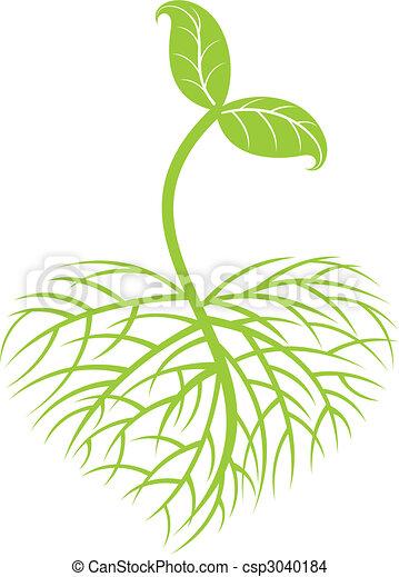 Anbaupflanze - csp3040184
