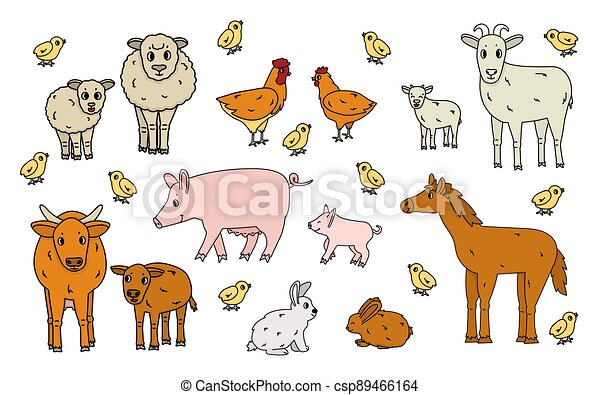 weißes, hahn, gekritzel, reizend, ram, klein, farm., freigestellt, grobdarstellung, karikatur, huhn, vektor, kind, satz, kälbchen, stier, kuh, kanninchen, groß, schwein, pferd, hintergrund., tiere, mutter, schafe, hase, ziege - csp89466164