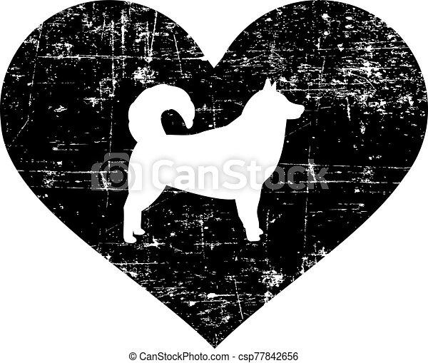 weißes, herz, alaskisch malamute, schwarz - csp77842656