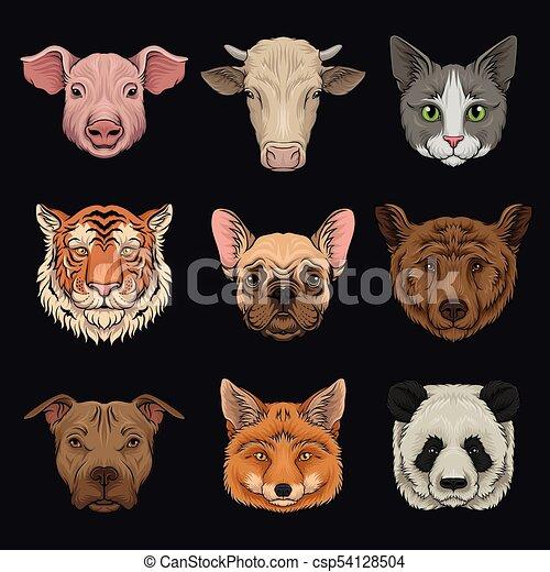Wilde und einheimische Tiere Set, Schweineköpfe, Kuh, Bulldog, Katze, Bär, Pug, Tiger, Fuchshand gezeichnet Vektor Illustrations. - csp54128504