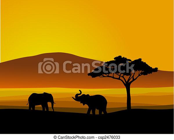 Wildtiere Afrika - csp2476033