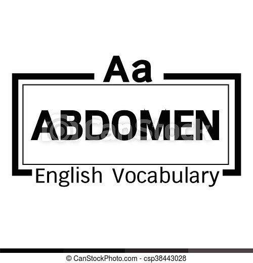 ABDOMEN English word vocabulary graphic design - csp38443028