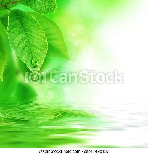 Wunderschöne Naturszene - csp11498137